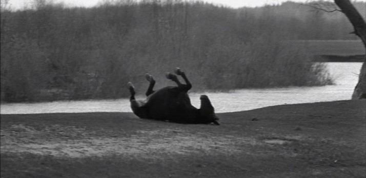 Film still from Andrei Tarkovsky's Andrei Rublev (1966). 1999 Criterion re-release.