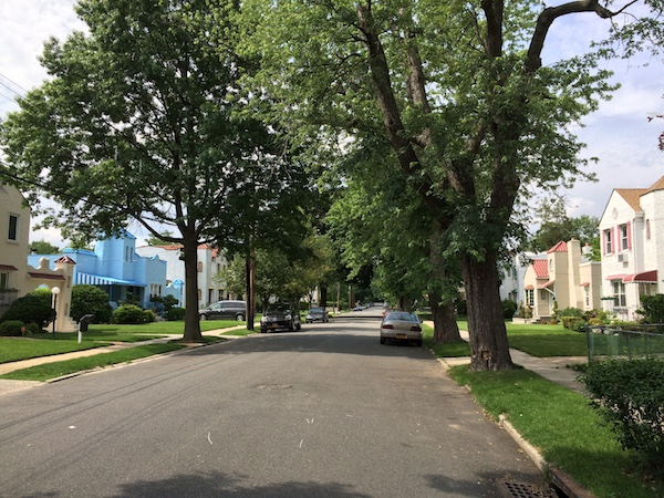 Large single family homes line a neighborhood street around the corner from Ali Najmi's campaign office in Bellerose, Queens.